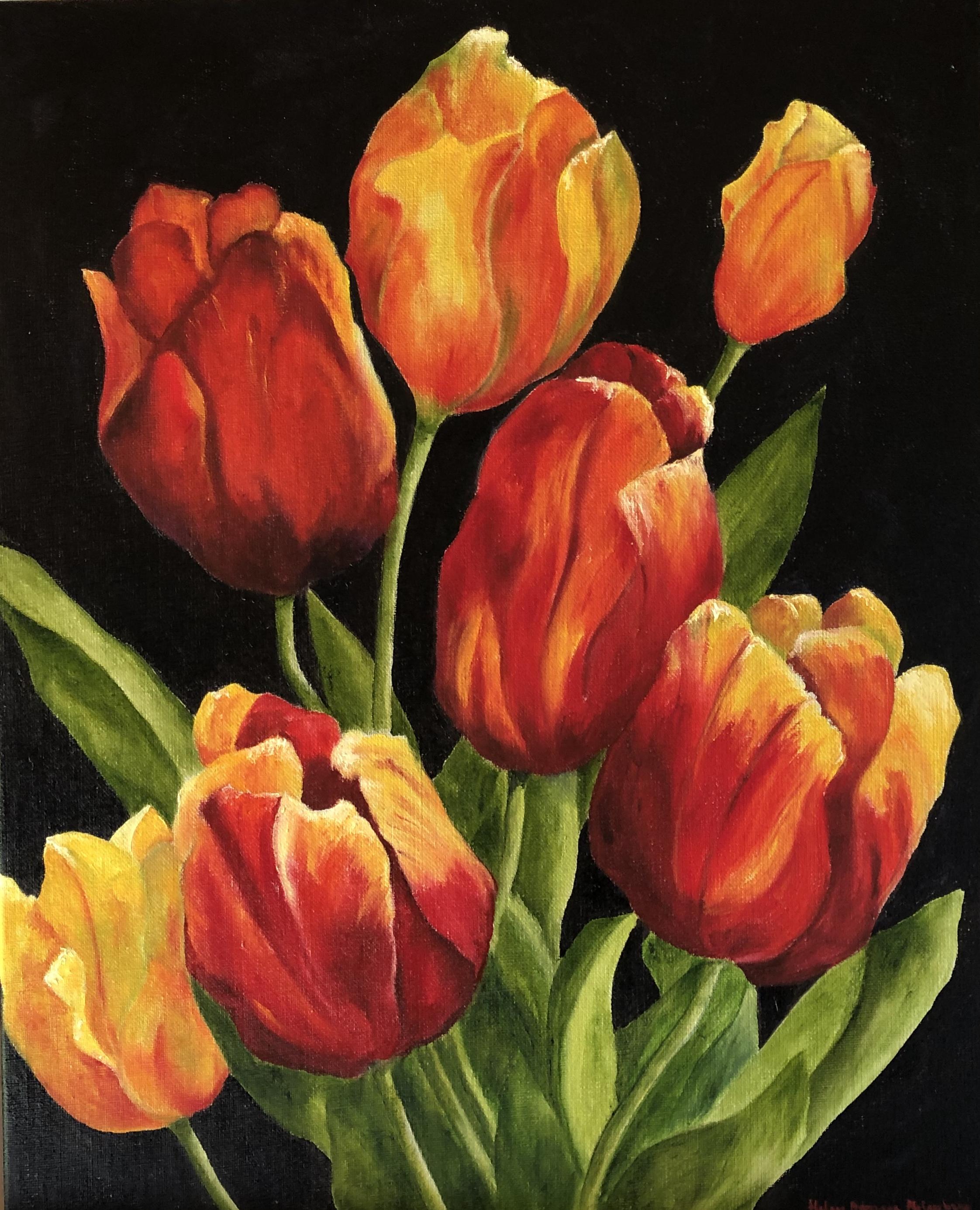 De rödaste tulpaner - 739