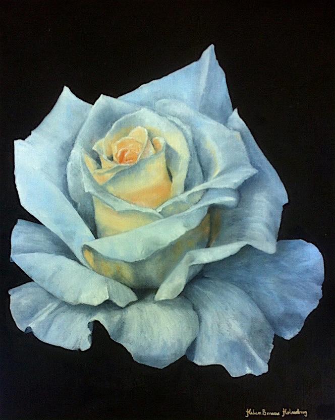 Den vita rosen-564