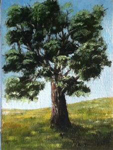 Ensamt träd - 525