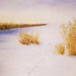 Harspår i snö - 041