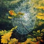 Höst i spindelns nät - 272