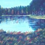 Liten sjö i skogen - 159