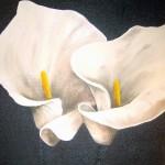 Ljusa liljor i par - 504