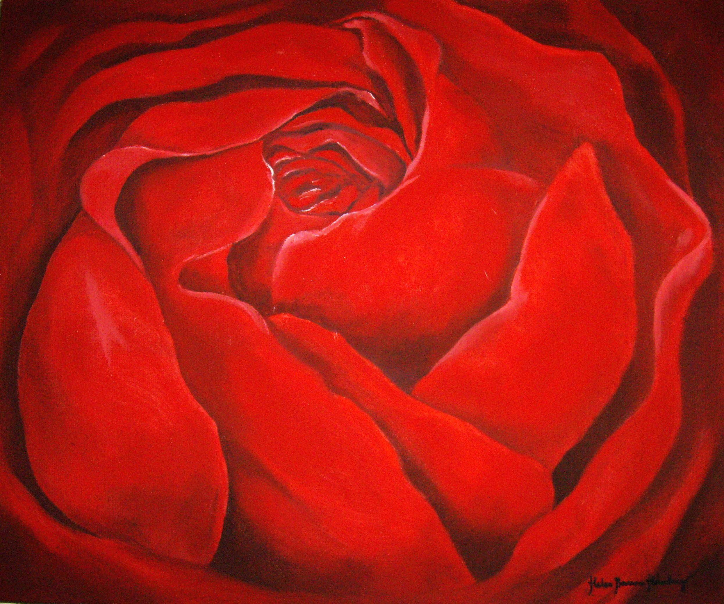 Röd ros 503