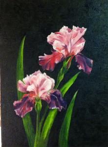 Rosa iris - 507