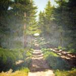 Skogsväg 128