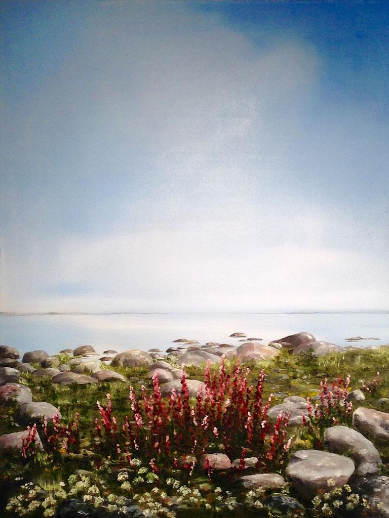 Stenig strand - 549