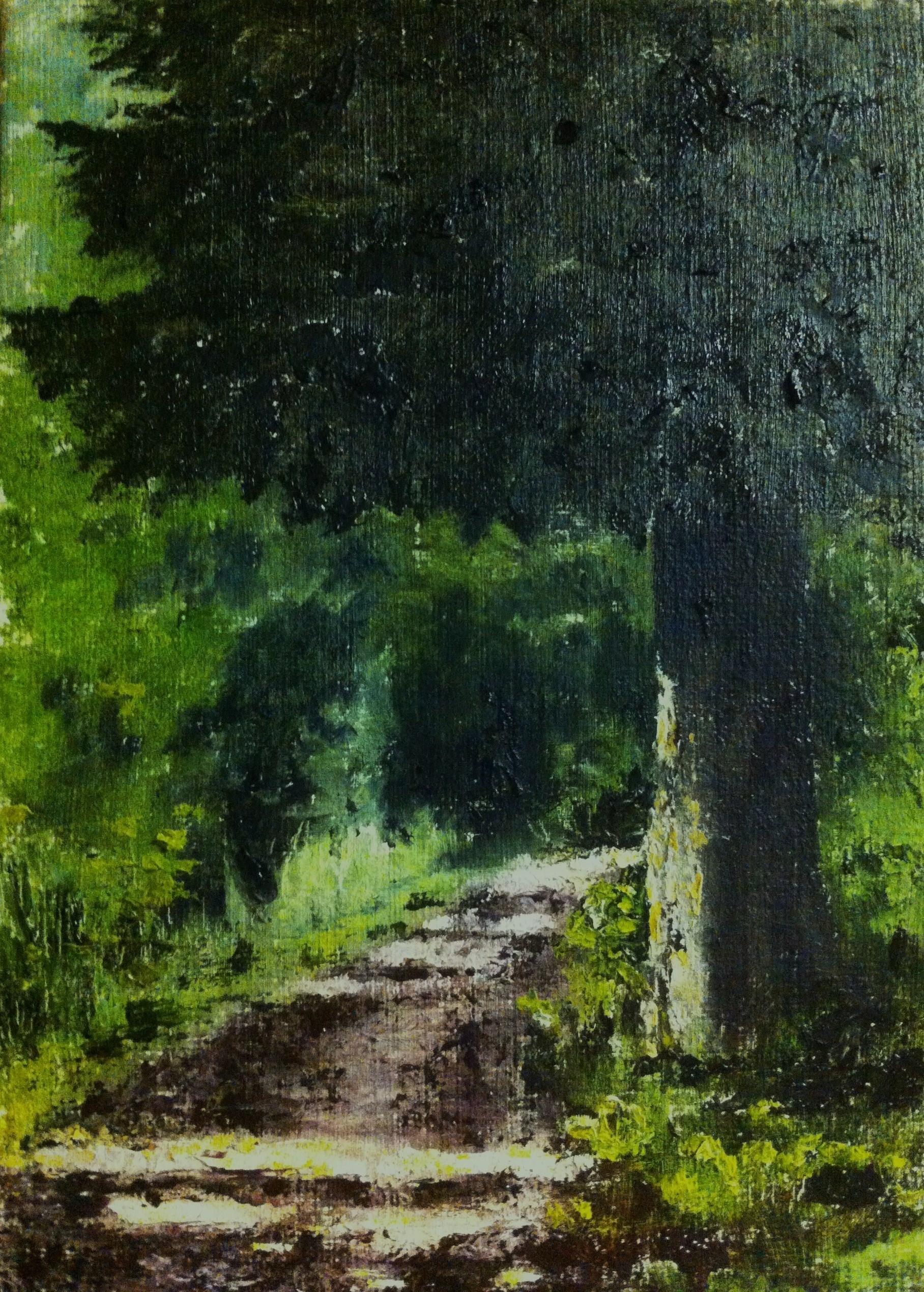 Stigen genom skogen - 519