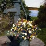 Trädgårdspumpen - 059