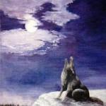 Vargmåne - 074