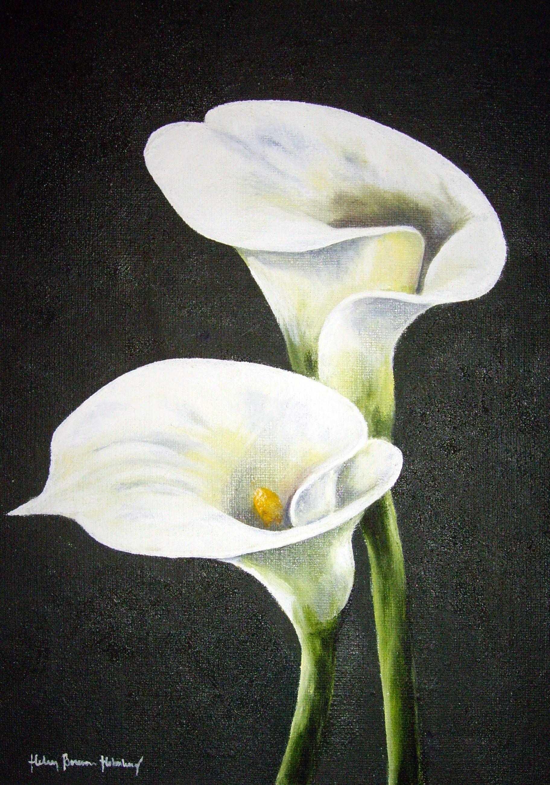 Vita liljor 505