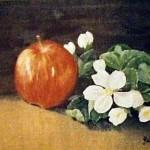 Äpplet - 067