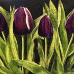 En bukett med lila tulpaner-745