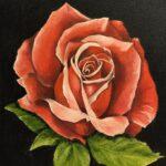 En liten ros - 791