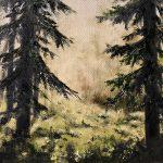 Ljus i skogen-682