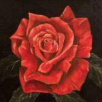 En liten ros till - 798
