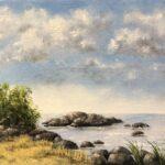 Stenar på stranden-818