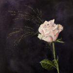 En rosa ros - 804