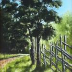 Gammal gärdsgård - 528