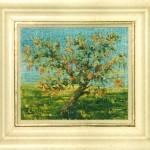 Gammalt äppleträd - 179