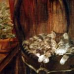Katten Truls - 062