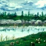 Liten skogssjö - 107
