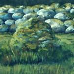 Mossig sten - 114