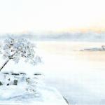 Nyårsmorgon - 093