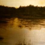 Skogssjö i brunt - 039