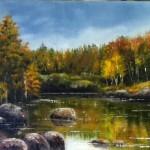 Stilla sjö i skogen - 540