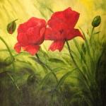 Vallmo en färgkick - 513