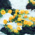 Vintergäck - 147